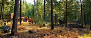 cascades cabin